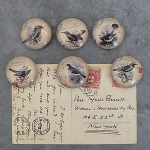 Set Of Six Antique Style Bird Magnets - kitchen