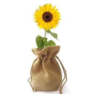Jute Bag Grow Set - flowers & plants
