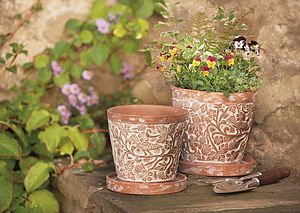 Bird And Bramble Plant Pot Set By Traidcraft - gardening