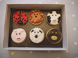 Animal Faces Biscuits - biscuits