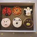 Animal Faces Biscuits