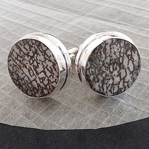 Dinosaur Bone Igaunodon Circular Cufflinks - for him
