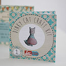 Dinky Cat Beginners Craft Kit