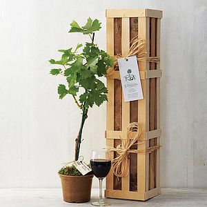 Grapevine Gift Set - engagement gifts