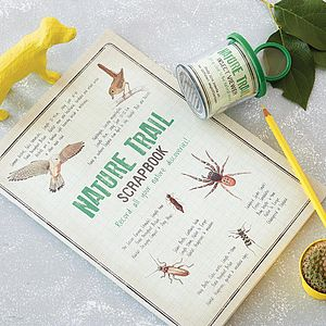 Nature Trail Viewer And Scrapbook - half term activities