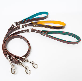 Handmade leather dog lead with brown main leather and hand-stitched handle with turquoise, yellow or green inner
