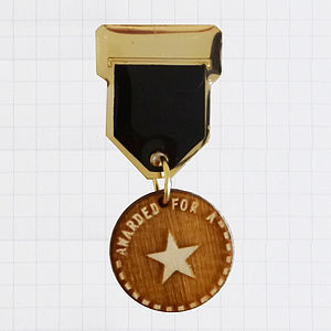 'Star' Champ Badge Medal Brooch - pins & brooches