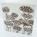 'British Birds' Pack Of Ten Greetings Cards
