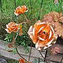 Copper Garden Rose Sculpture Set Of Three