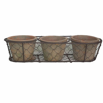 Aged Terracotta Pots In Wire Basket