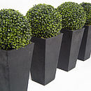 Artificial boxwood balls in black granite planters