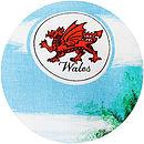Welsh emblem vintage cushion detail