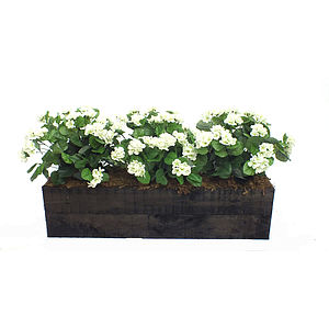 Artificial Geranium Flower Box - silk & paper flowers
