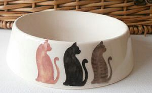 Cat Bowl - cats