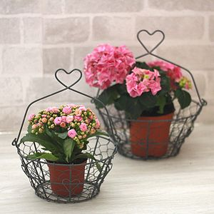Set Of Two Heart Handled Baskets