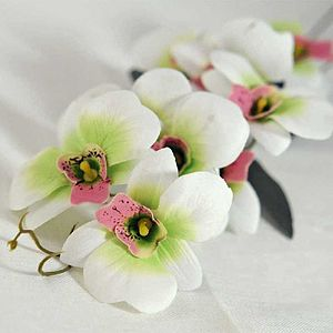 White And Pink Silk Orchid Flowers - flowers & plants