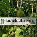 'Gone To The Allotment' Wooden Sign