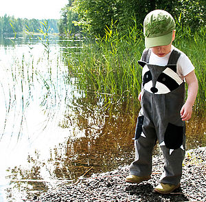 Boy's Raccoon Dungaree - woodland trend