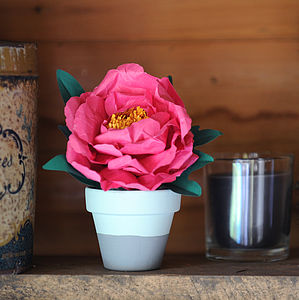 Everlasting Full Bloom Peony In Pot - room decorations