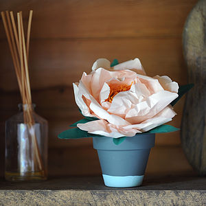 Everlasting Closed Paper Peony In Pot - artificial flowers