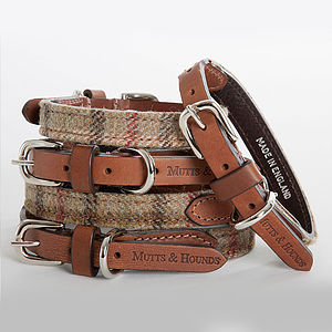 Tweed & Leather Dog Collar - walking