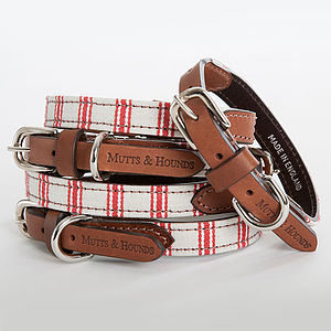 Ticking Stripe & Leather Dog Collar - dogs