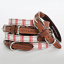 Cranberry Stripe Collar