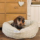 Sage Bone Donut Bed