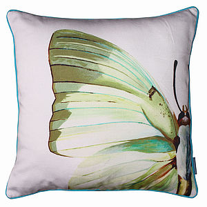 Butterfly Wing Cushion - cushions
