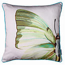 Butterfly Wing Cushion
