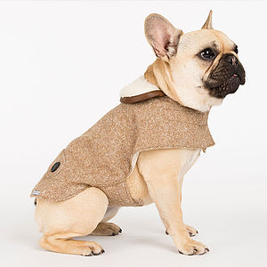 Camel Tweed Dog Coat - dogs