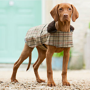 Luxury Tweed Dog Coat - clothes