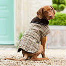 Luxury Tweed Dog Coat