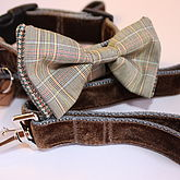 Scrufts Astaire Bow Tie Dog Collar And Lead - pets