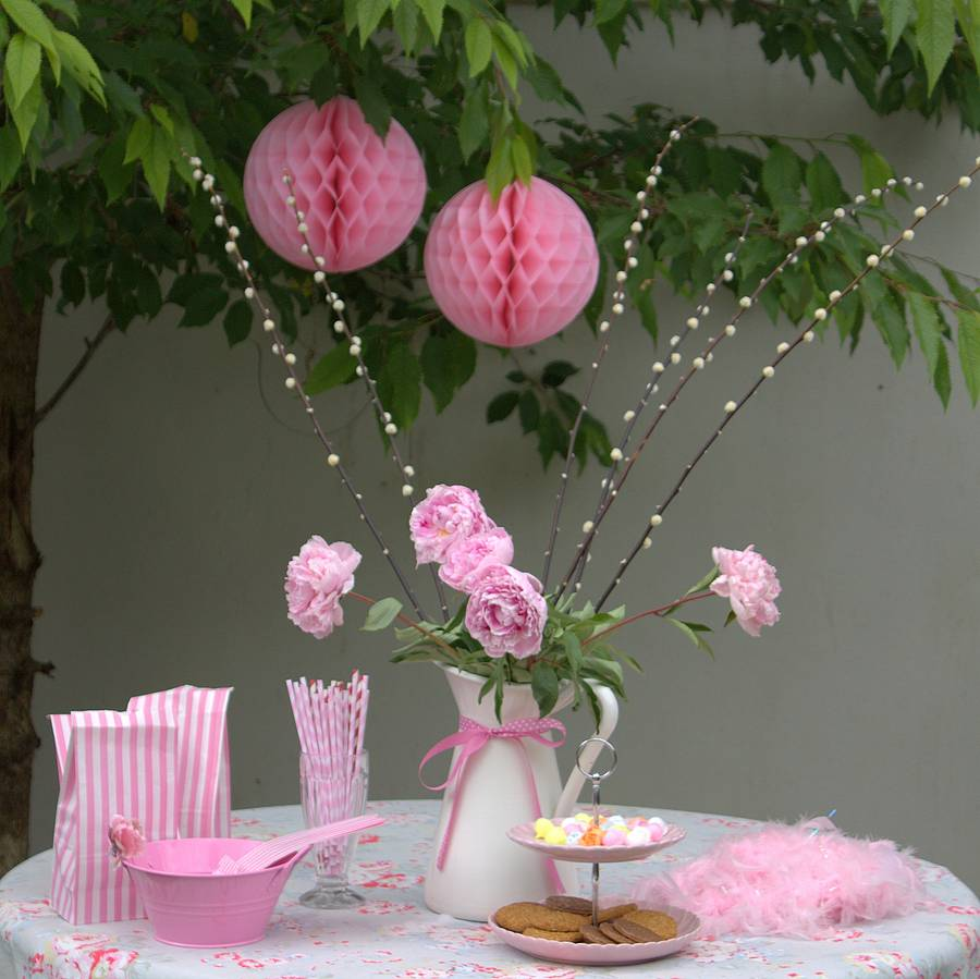 Pink Honeycomb Party Decoration By Ella James