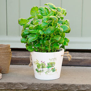 Wooden Herb Bucket Planter - gardening