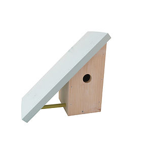 Home For Wings Bird House - birds & wildlife