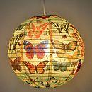 Butterfly Paper Lantern