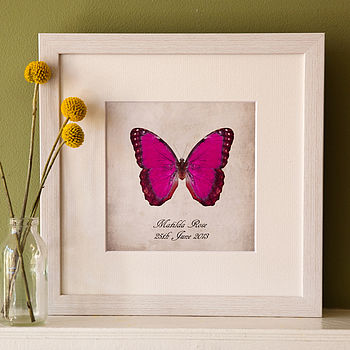 Pink Butterfly on White Frame