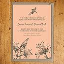Vintage Bird Peach Invitation