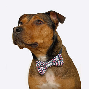 Ikat Dog Bow Tie - dogs