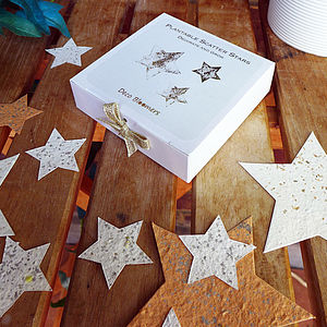 Plantable Scatter Stars - confetti, petals & sparklers