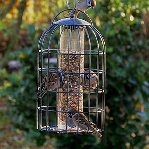 Birdcage Seed Birdfeeder For Garden Birds - birds & wildlife