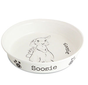 Personalised Pet Bowl - for small animals & wildlife