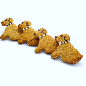 Pack Of Four Doggie Dog Treats - food, feeding & treats