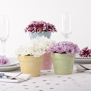 Spotty Pastel Plant Pot - shop by price