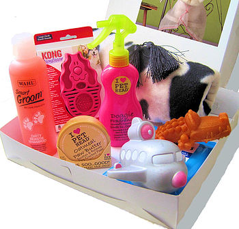 Dog Pamper Hamper For Girls