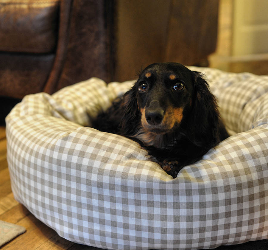 taupe gingham donut dog bed with removable cushion by the