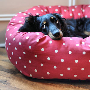 Red Dotty Donut Dog Bed With Removable Cushion - dogs