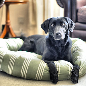 Marlow Stripes Donut Dog Beds - dogs